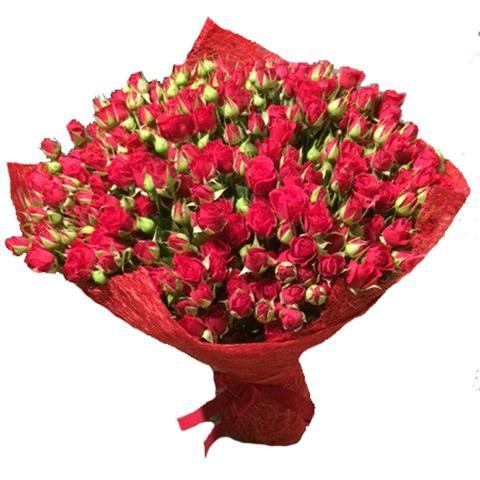 Розы кустовые купить